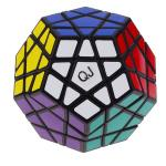 QJ 12-Color Megaminx Magic Cube Stickered Black
