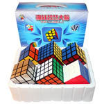 ShengShou 6 Magic Cubes Bundle - 2x2  3x3 4x4 5x5 Mirror Cube